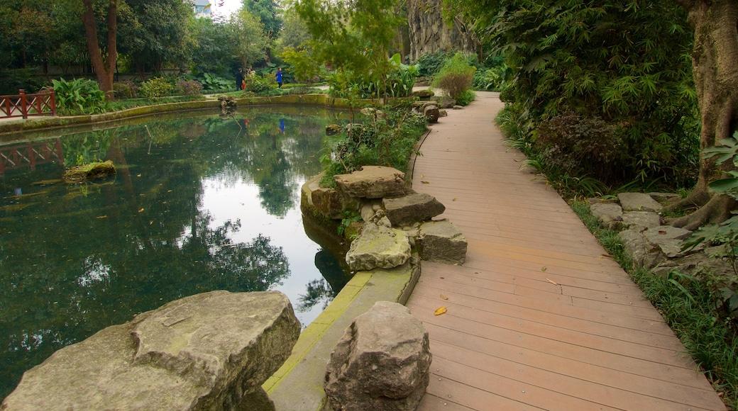 Baihuatan Park que incluye un estanque y un parque