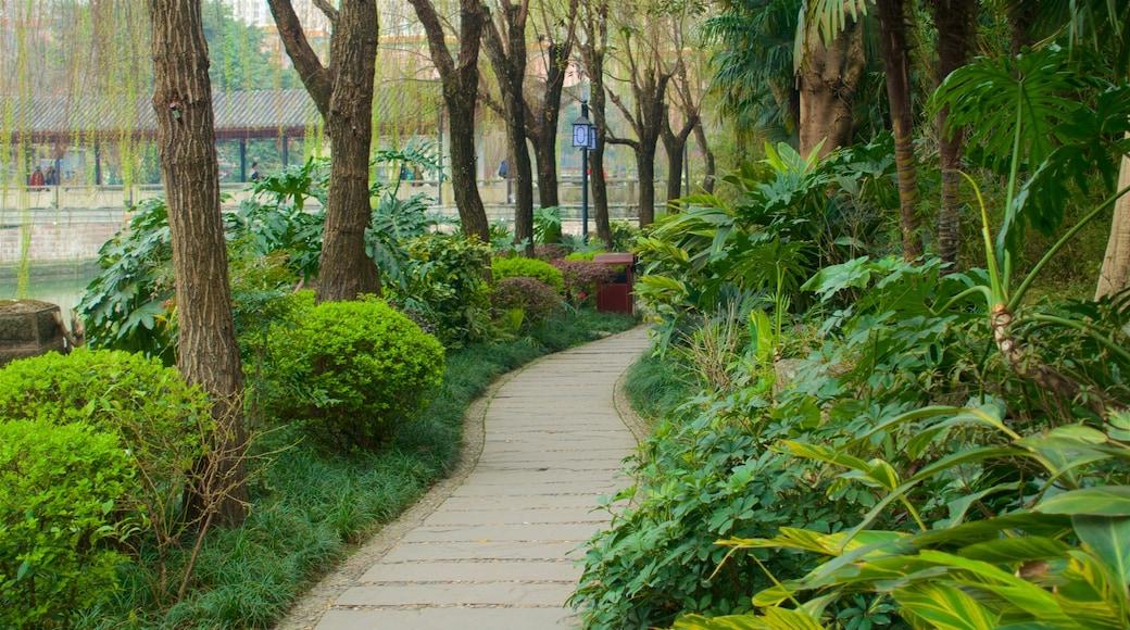 Baihuatan Park mostrando un jardín