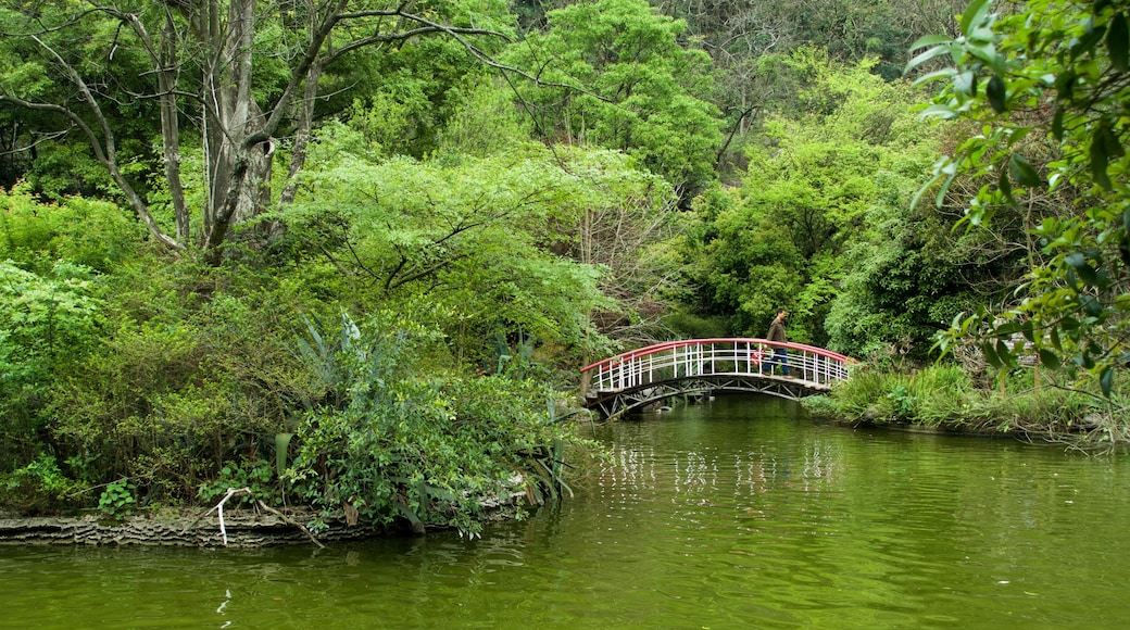 七星公園 呈现出 河流或小溪, 森林風景 和 橋樑