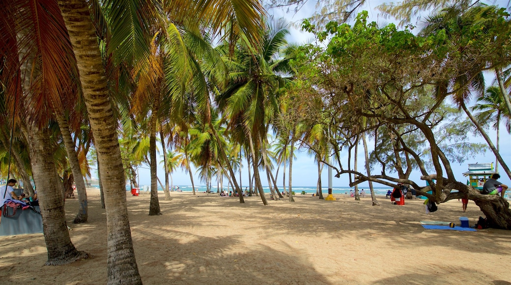 Escambron Beach