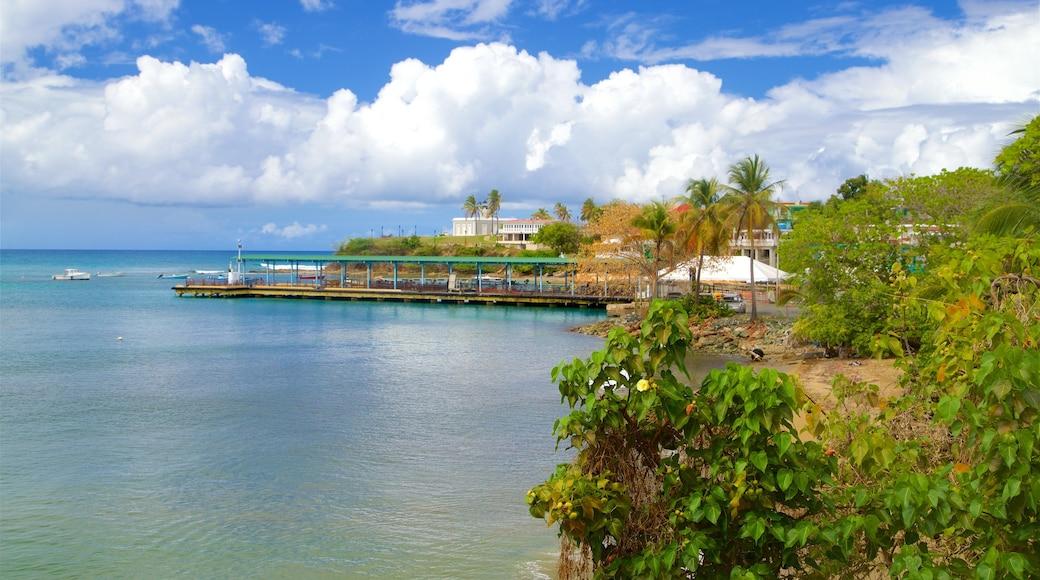 Vieques Ferry Terminal