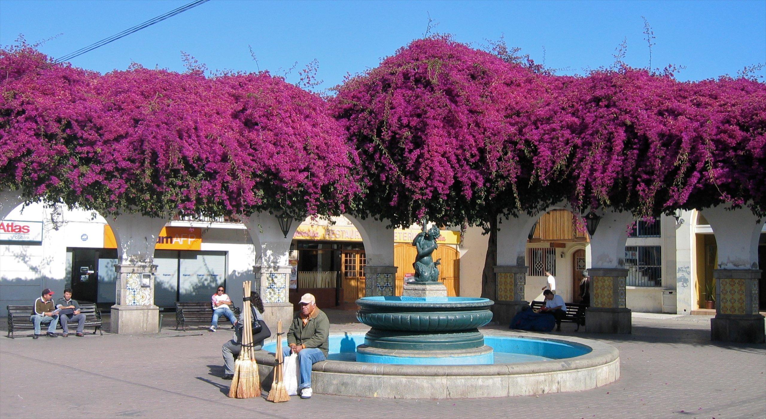 Elqui Province, Coquimbo Region, Chile