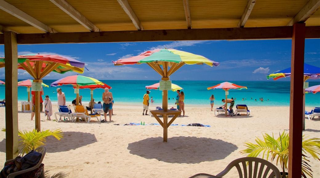 Darkwood Beach welches beinhaltet allgemeine Küstenansicht, tropische Szenerien und Sandstrand