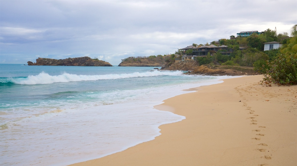 Galley Bay featuring island images, a sandy beach and surf