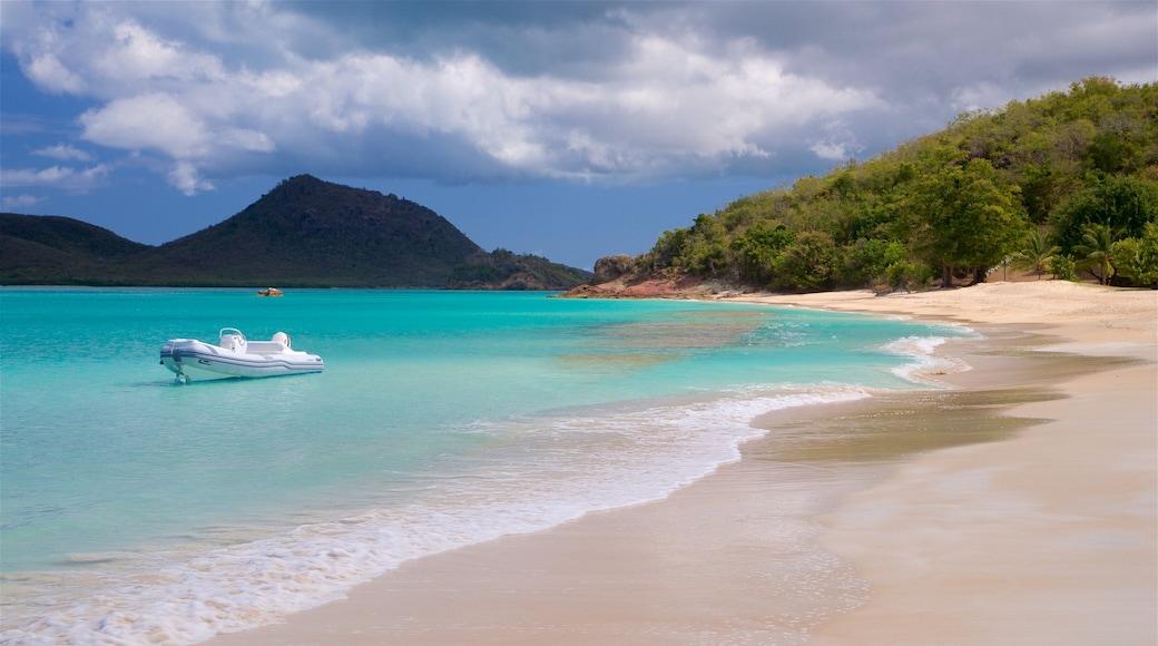 Antigua and Barbuda showing a beach and general coastal views