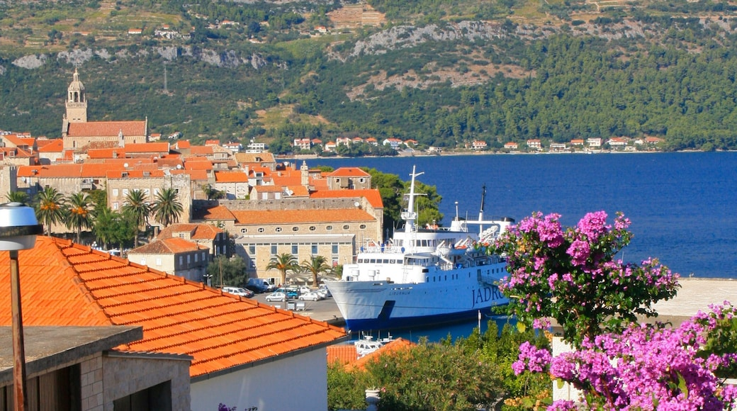 Korcula showing a bay or harbour, wild flowers and cruising