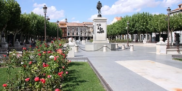 Alcalá de Henares das einen Park, Wildblumen und Statue oder Skulptur