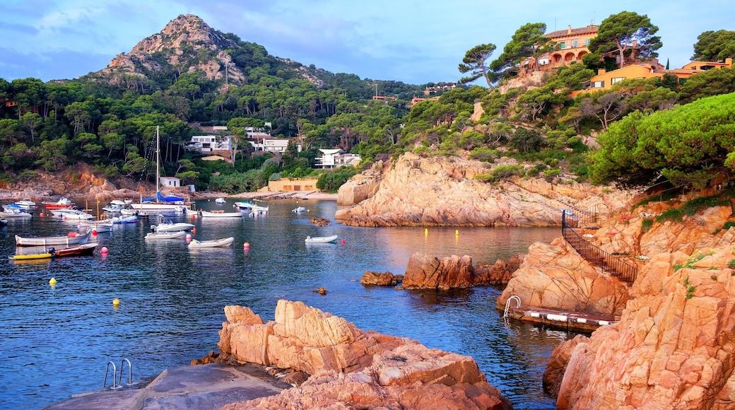 Begur presenterar en hamn eller havsbukt, klippig kustlinje och en kuststad