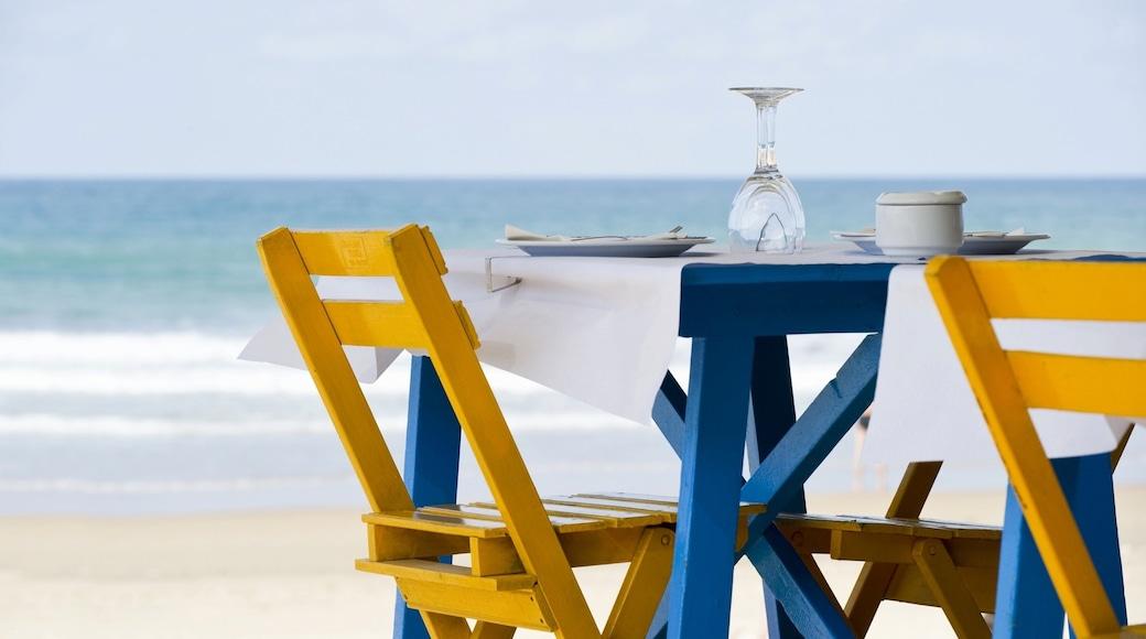 Conil de la Frontera caratteristiche di vista della costa e mangiare fuori