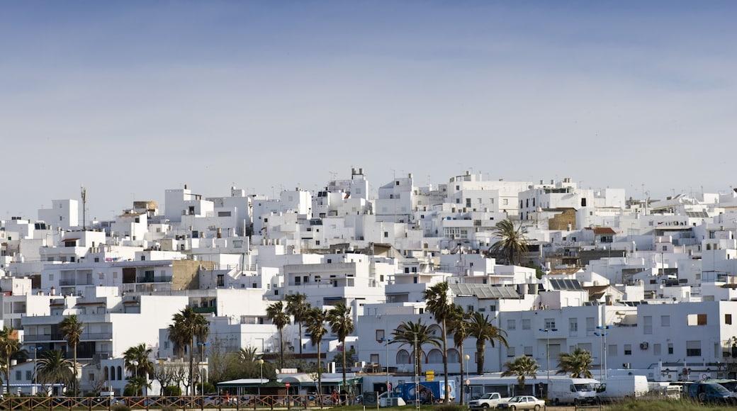 Conil de la Frontera showing landscape views and a city