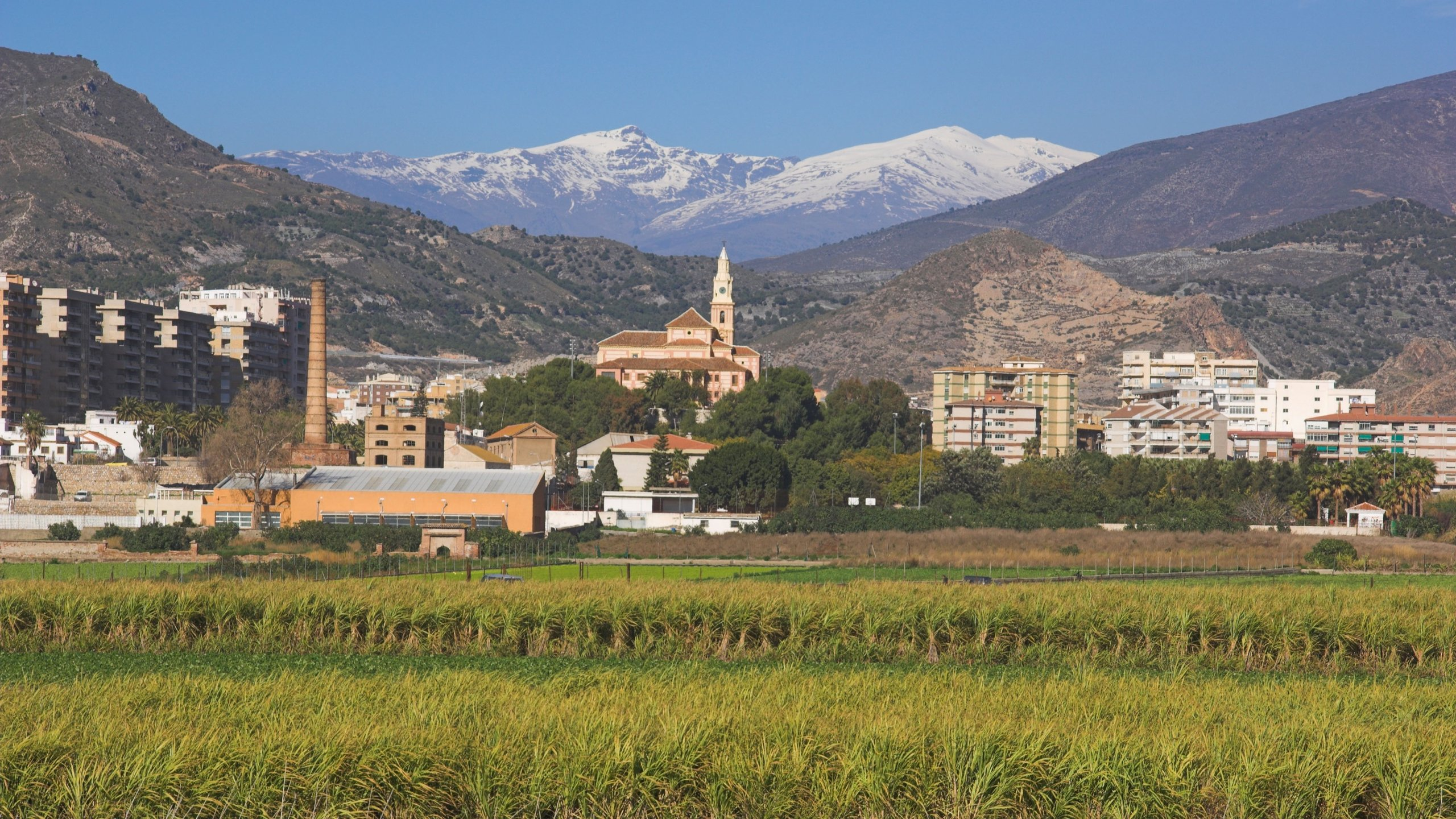 Visit Motril 2021 Travel Guide For Motril Andalusia Expedia