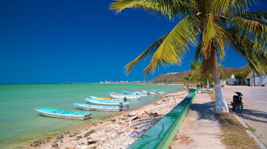 Seybaplaya que incluye una playa de arena, escenas tropicales y litoral rocoso