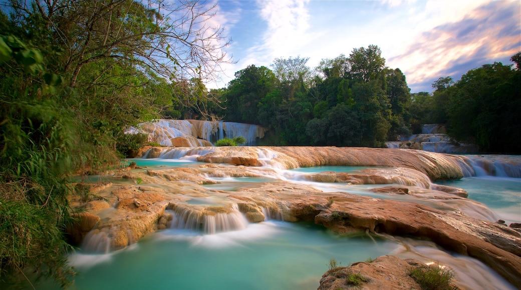 Cascadas de Agua Azul featuring a river or creek, landscape views and a sunset