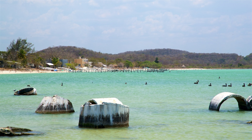 Siho Playa ofreciendo vistas de una costa y escenas tropicales