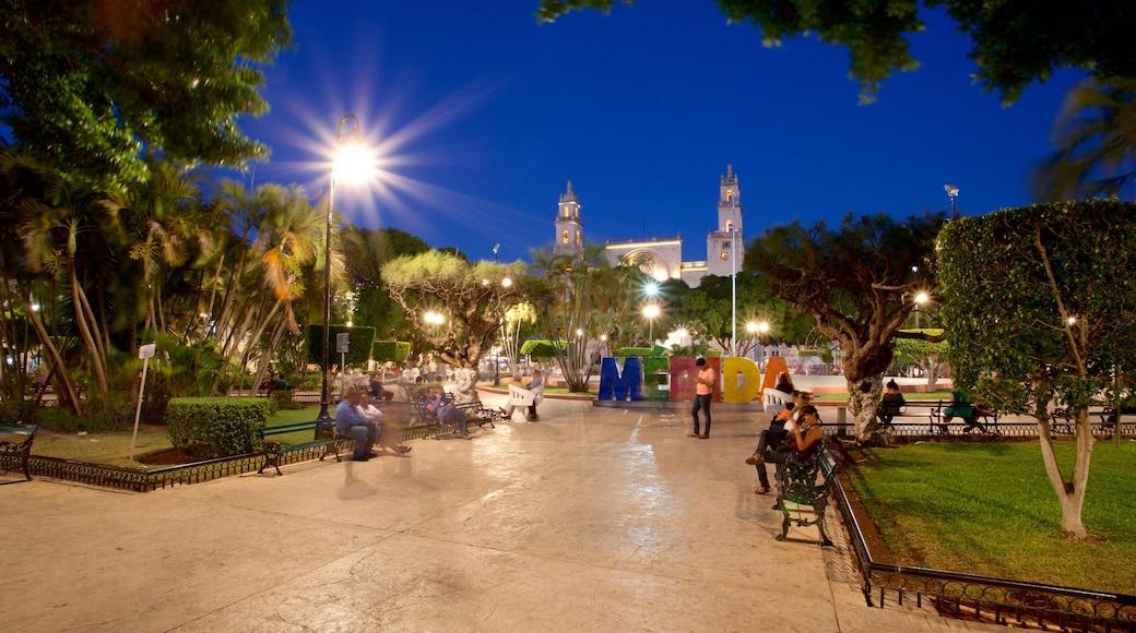 Catedral de Mérida que incluye escenas nocturnas y un jardín y también un pequeño grupo de personas