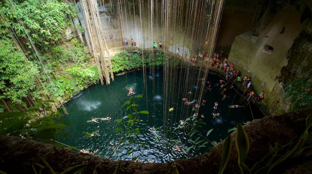 Cénote Ik Kil mettant en vedette lac ou étang et baignade aussi bien que petit groupe de personnes