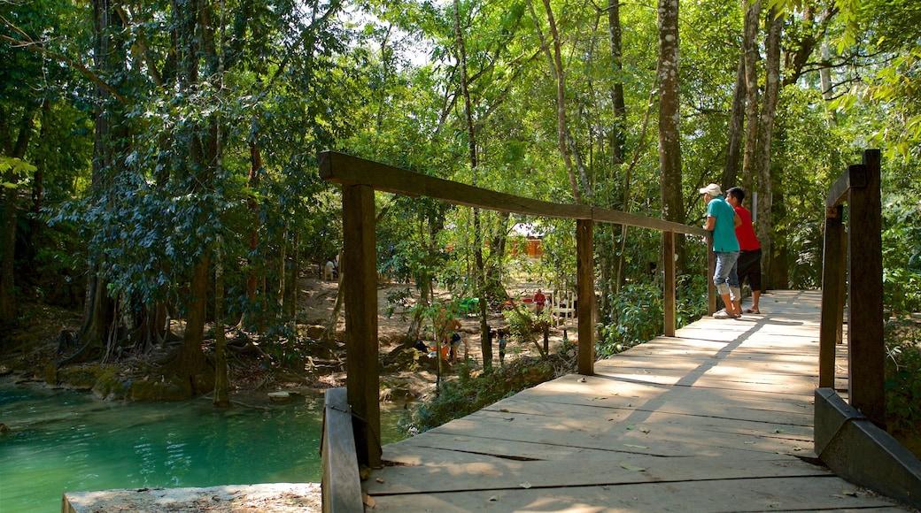 Cascada de Roberto Barrios featuring a bridge and a river or creek as well as a couple