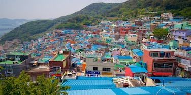 Gamcheon Culture Village featuring a city and landscape views
