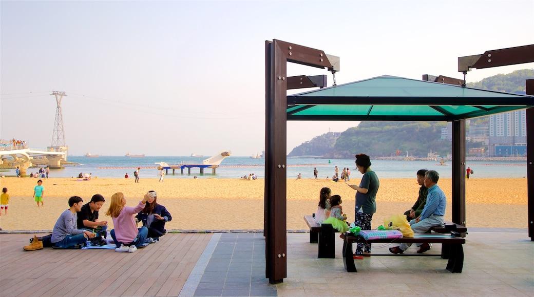 Songdo Beach featuring a sandy beach, a sunset and general coastal views