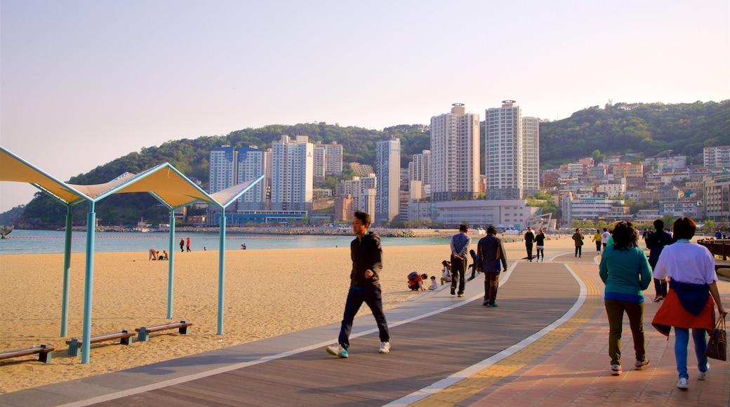 Songdo Beach showing a sunset, a coastal town and a beach
