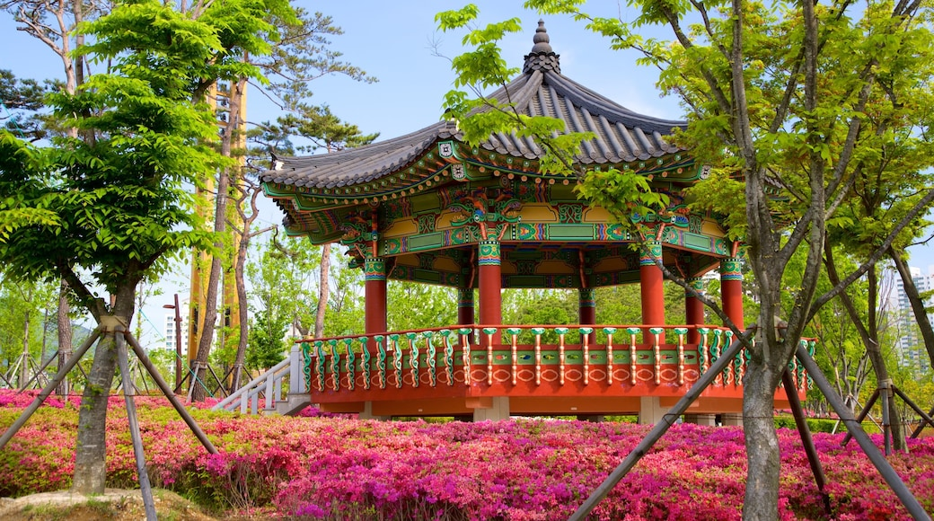 Busan Citizens Park which includes heritage elements, wild flowers and a garden