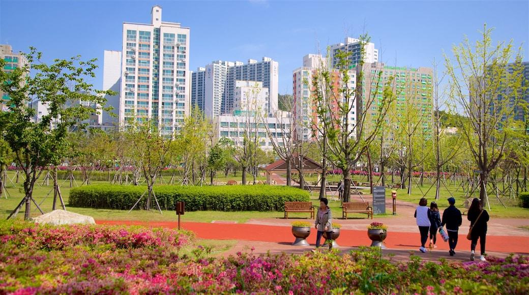 Busan Citizens Park showing a city, a garden and wild flowers