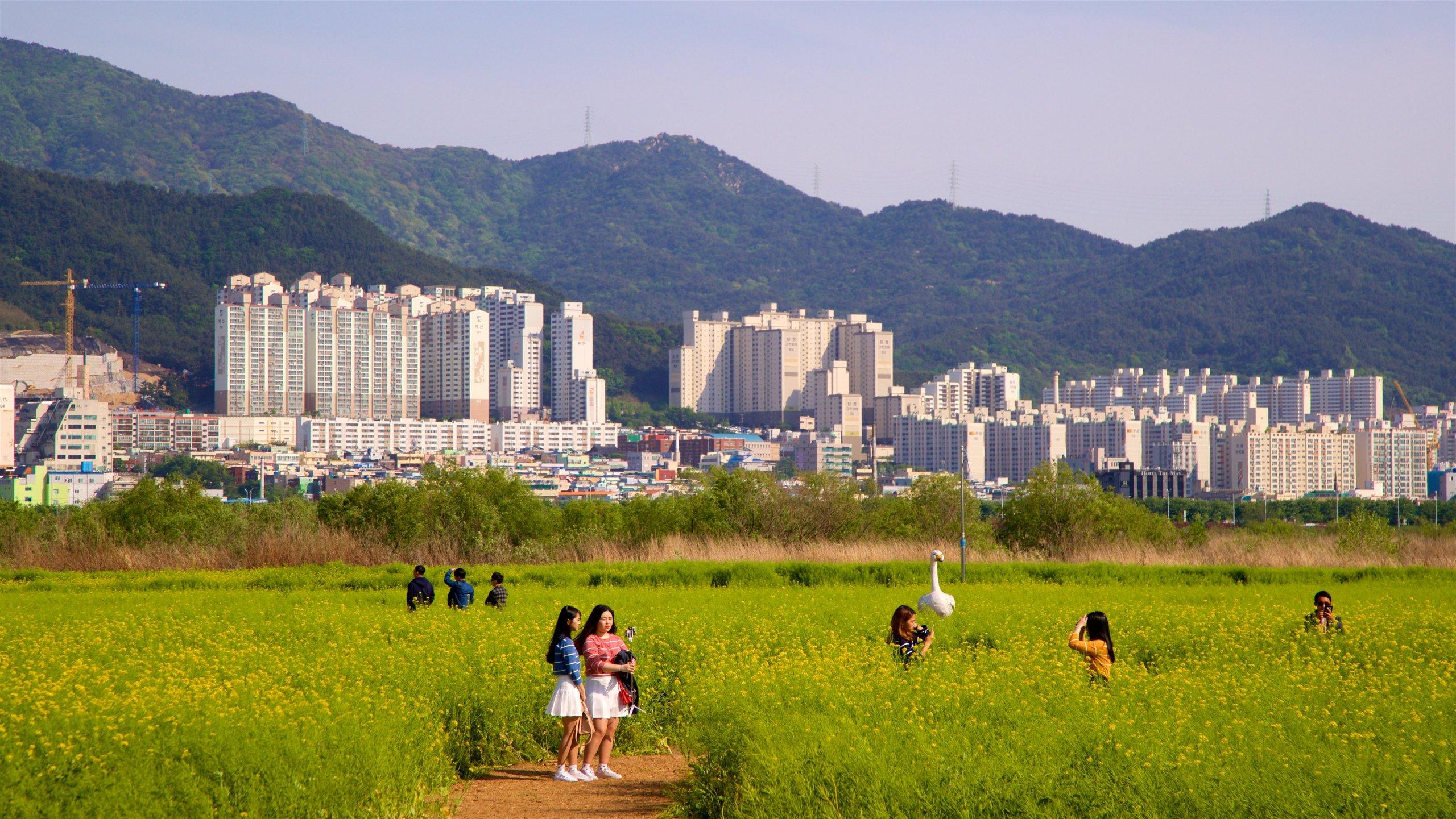 Gangseo District, Busan, South Korea