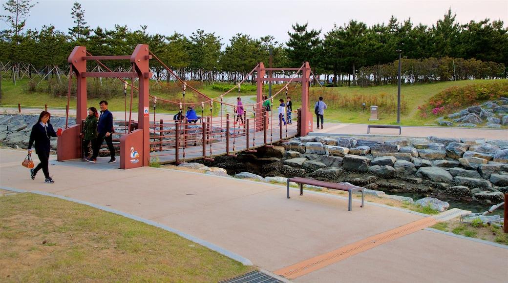 Busan que incluye un río o arroyo, un jardín y un puente