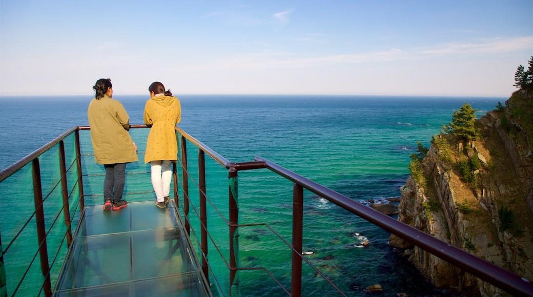 Gangneung featuring general coastal views, rocky coastline and views