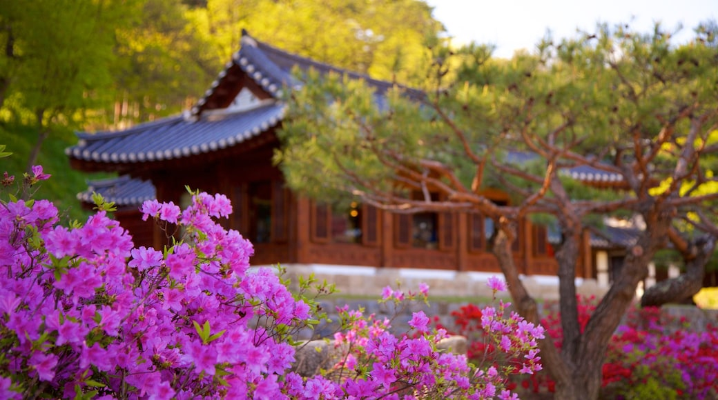 Gangneung Seongyojang House featuring heritage elements and wild flowers