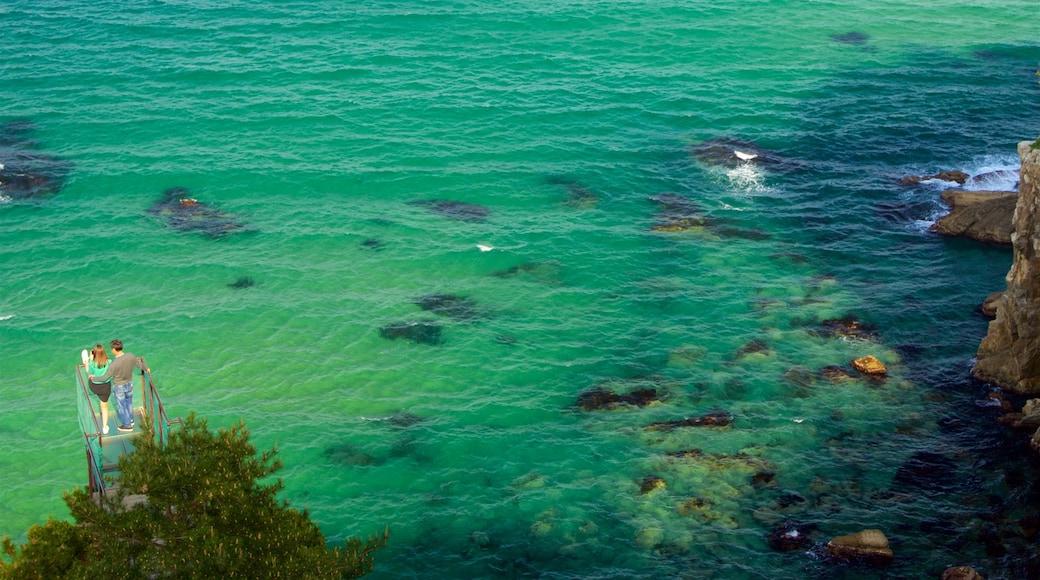강릉 이 포함 울퉁불퉁한 해안선 과 일반 해안 전경 뿐만 아니라 커플