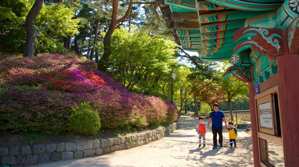 Gyeongpodae featuring heritage elements and wild flowers as well as a family