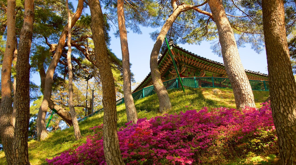 Gyeongpodae featuring wild flowers and heritage elements