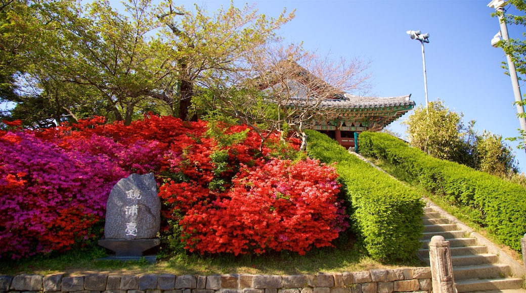 Gyeongpodae which includes heritage elements, a garden and wild flowers