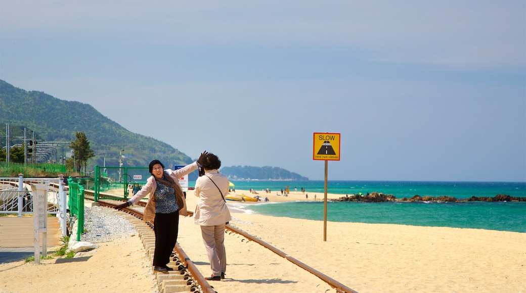 Jeongdongjin Beach which includes general coastal views and a beach as well as a couple