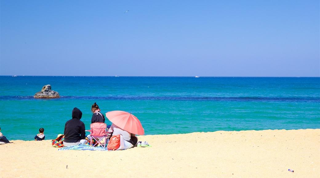 Anmok Beach which includes a beach and general coastal views as well as a family