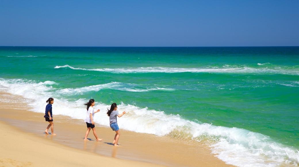 Gyeongpo Beach featuring general coastal views and a sandy beach as well as children