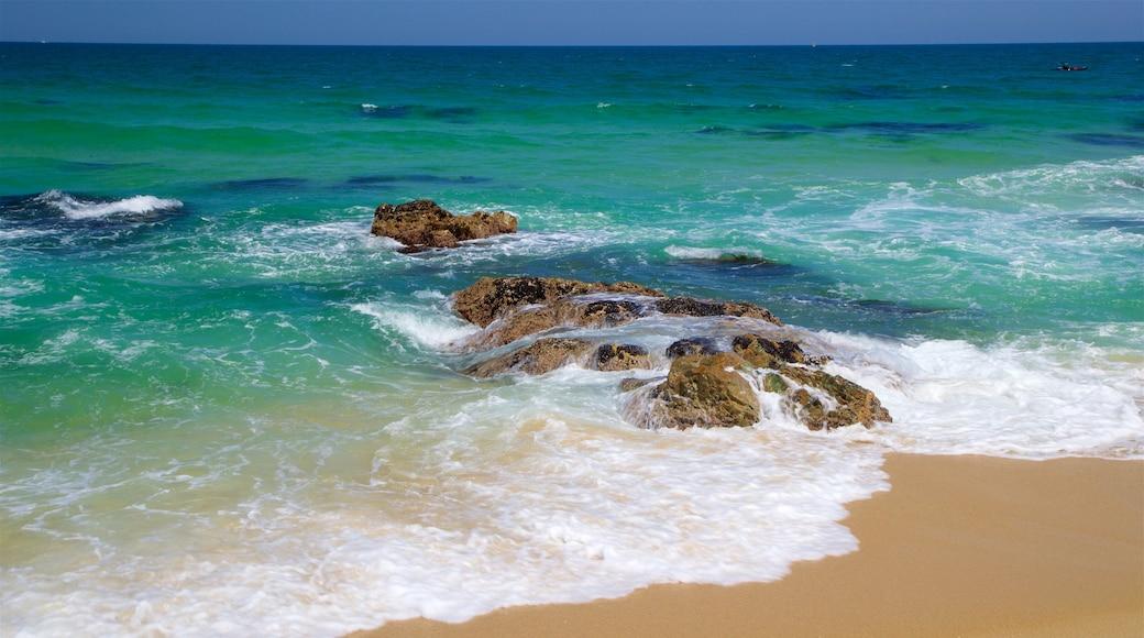 Gyeongpo Beach featuring general coastal views, a beach and rocky coastline