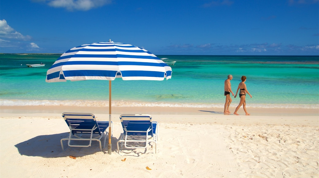 Antigua showing tropical scenes, a sandy beach and general coastal views