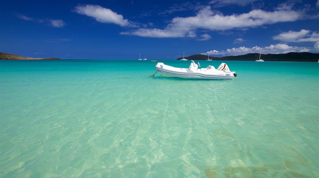 Antigua das einen allgemeine Küstenansicht und tropische Szenerien