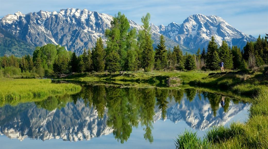 Schwabacher\'s Landing joka esittää joki tai puro, vuoret ja rauhalliset maisemat