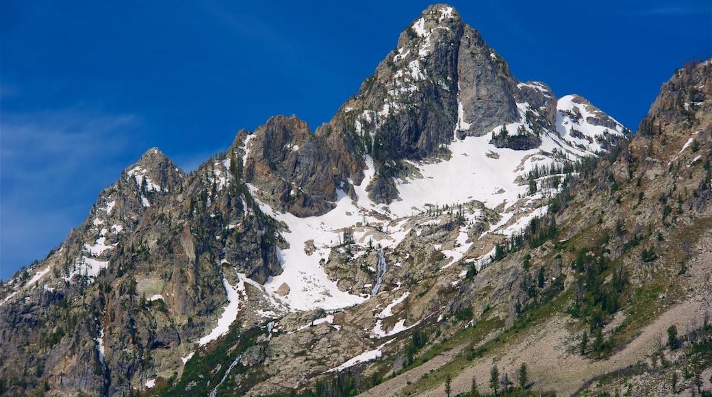 Grand Tetonin kansallispuisto joka esittää vuoret ja lunta