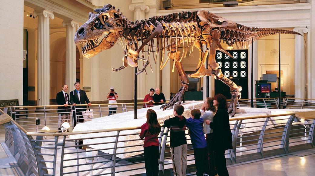 Field Museum of Natural History featuring heritage elements and interior views as well as a family