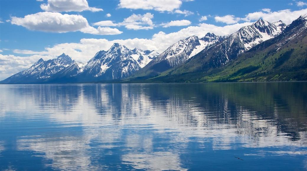 Jackson Lake featuring vuoret ja järvi tai vesikuoppa