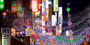 Suwon which includes night scenes