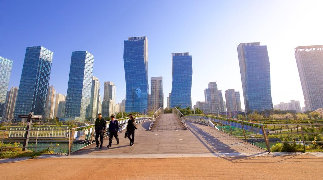 松島中央公園 其中包括 橋樑, 城市 和 夕陽