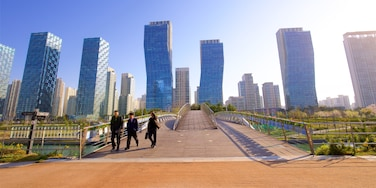 Songdo Central Park showing a high rise building, a bridge and a city