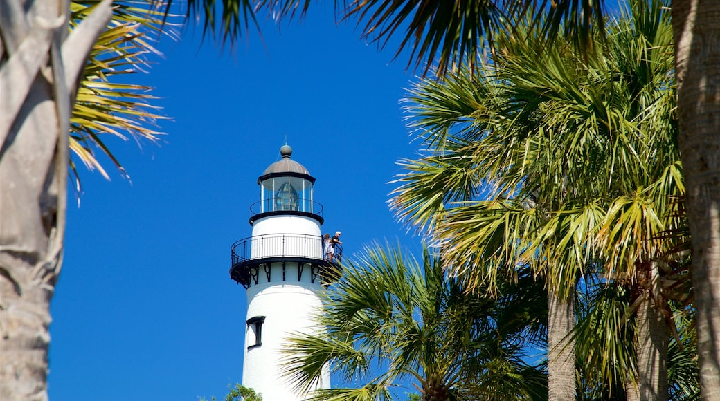 St. Simons Lighthouse Museum showing a lighthouse