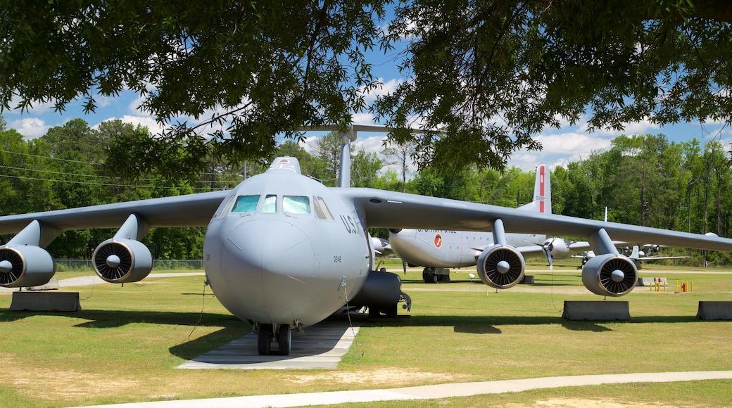 Museo de aviación Warner Robins ofreciendo artículos militares, elementos del patrimonio y un jardín