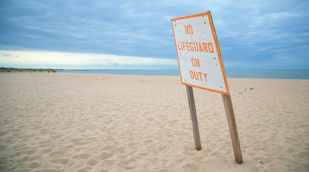 Lewes Beach featuring signage, a sandy beach and general coastal views